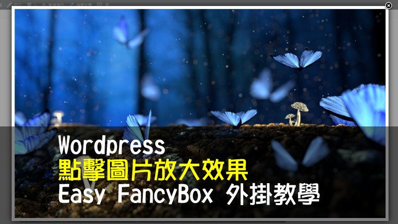WordPress 點擊圖片放大效果-Easy FancyBox 外掛教學
